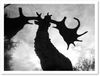Megaloceros, Crystal Palace Park, London